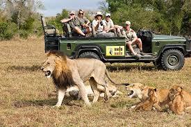 Kenya Safari – Top Kenya Safari Vacations Trip And Travel